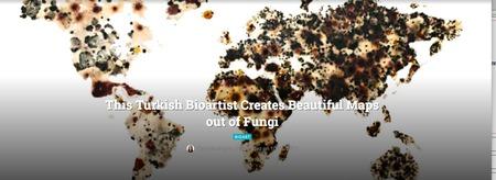 This Turkish Bioartist Creates Beautiful Maps out of Fungi